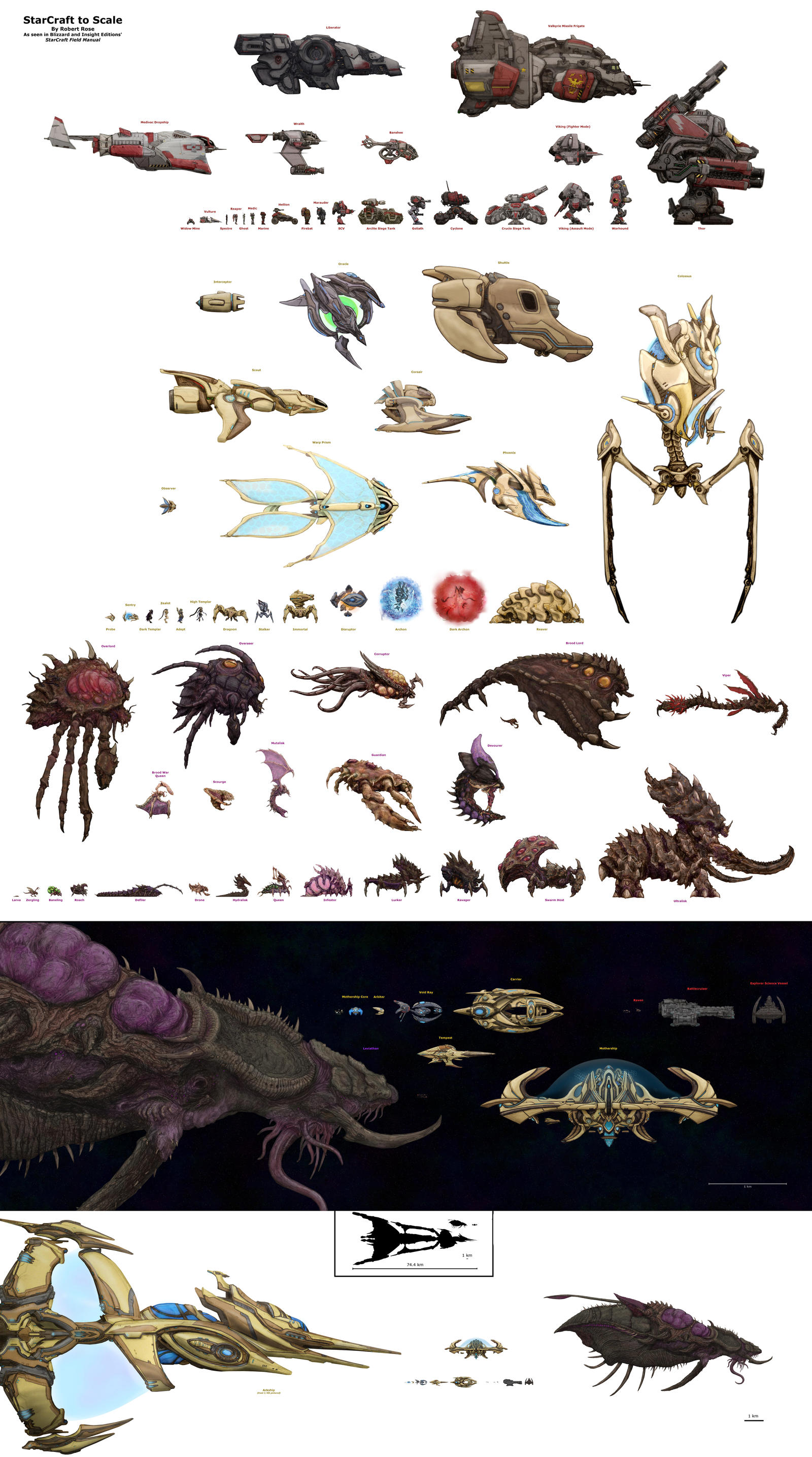StarCraft to Scale by xiaorobear on DeviantArt