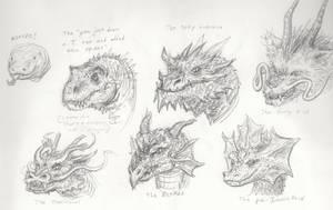 Dragon sketches by xiaorobear