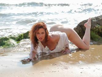 on all fours on the beach by MarcBergmann