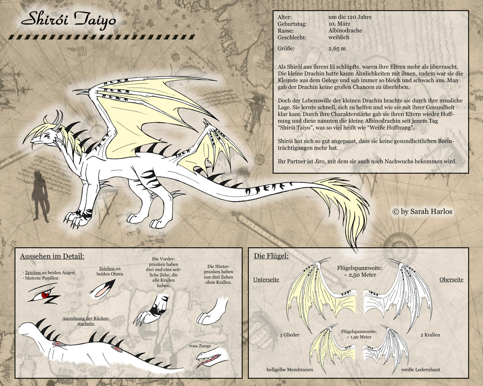 DaR - Shiroi Sheet by InnocentiaSanguinis