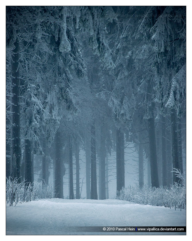 Dark Tranquillity by Vipallica