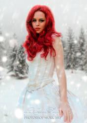 Winter by sergekrivoshei