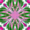 Green, Pink and White Pattern by RandomDesigner