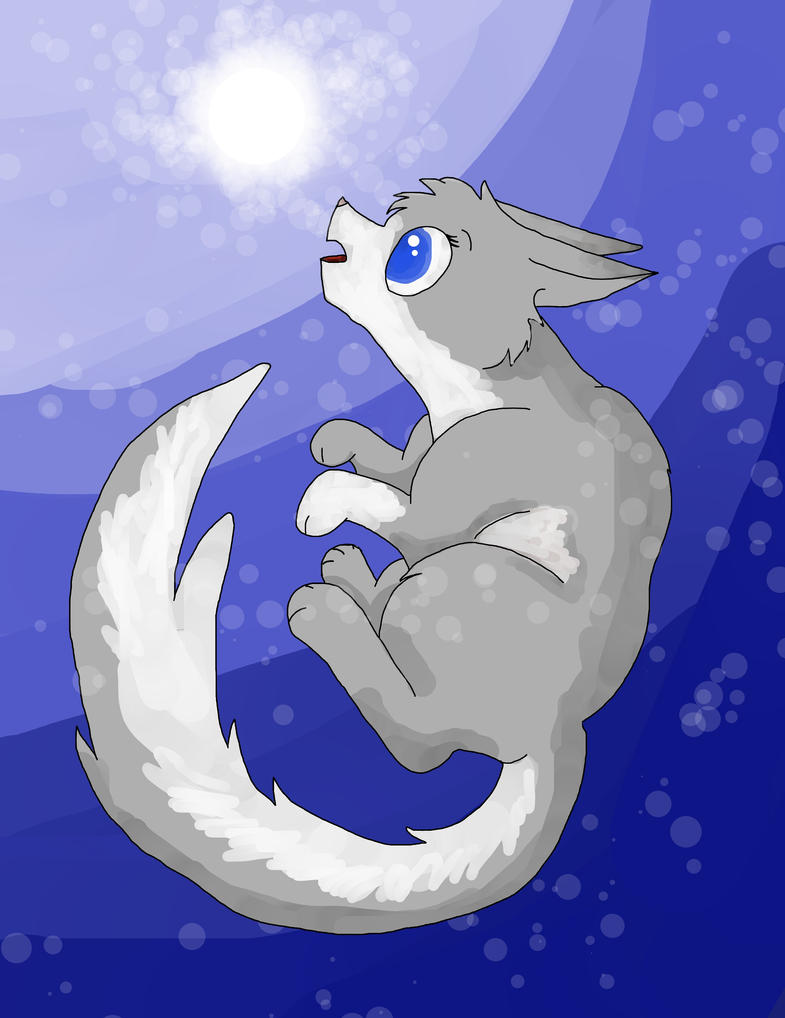Wonder - Warrior cat OC art by Winter-Sky529