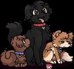 Coco, Charlie and Sasha for Sherlyn