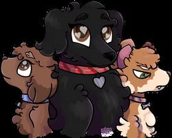 Coco, Charlie and Sasha for Sherlyn [Headshot]