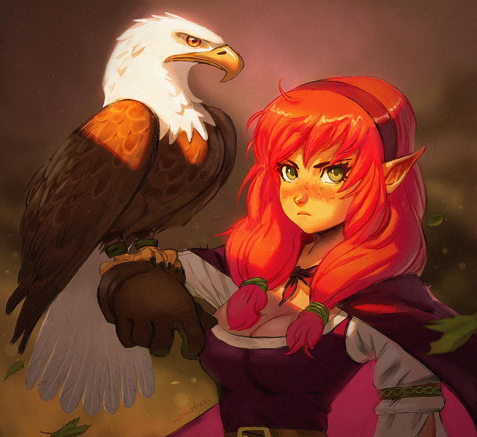 :Falconer+video process in description: by lehuss