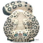 SnowLeopard - FuzzyAnimalOrbs Challenge