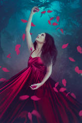 Forest Fairy by LenaSunny
