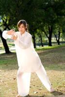 Tai Chi 3 by rolachen