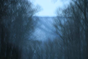 Night Terrors in my Mind by wstoneburner
