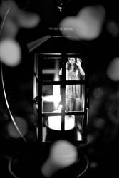 Lantern Trap by wstoneburner