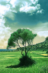 miss the paradise by DodoLeMbeM
