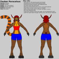 Zauber Ref Sheet 2018 by ZauberParacelsus
