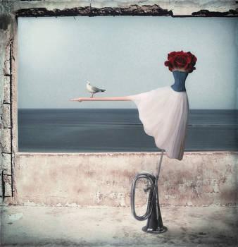 Seagull's poetic licence... by StelfySkya