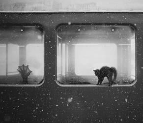 Murder on the Orient Express... by StelfySkya