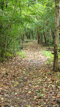 Path October