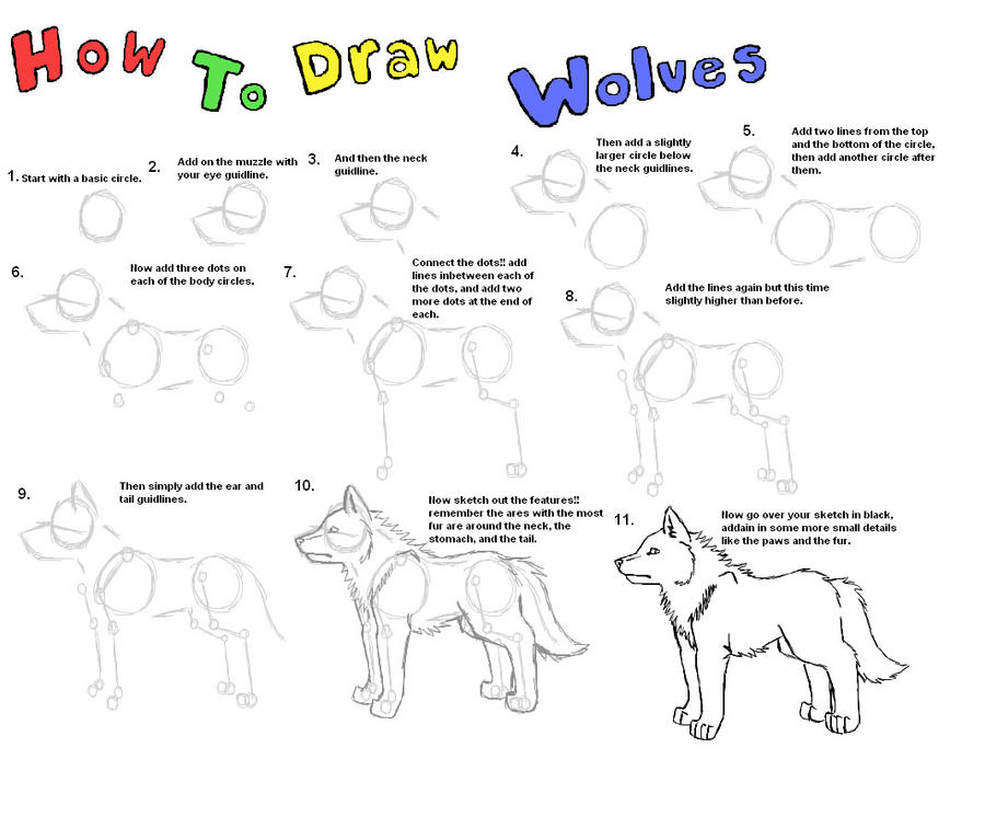 How To Draw A Realistic Wolf Head Step By Step