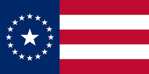 The New Southern Flag