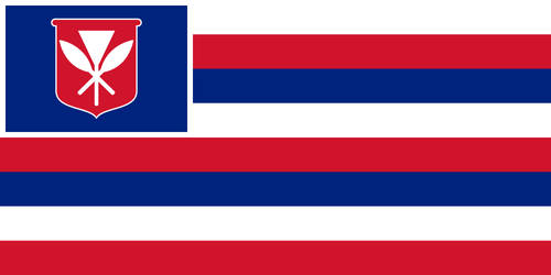 The New Flag of Hawaii