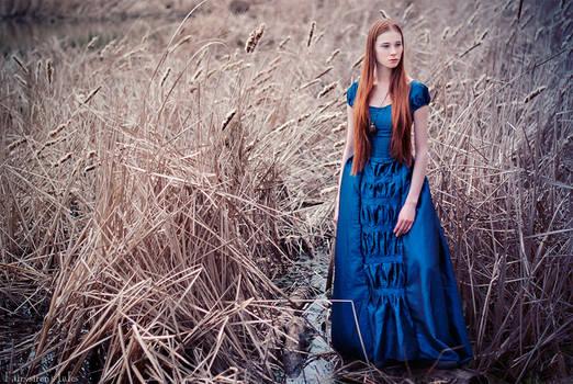Something about blue dress I.