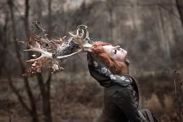 Forest deer girl I. by Fairysiren