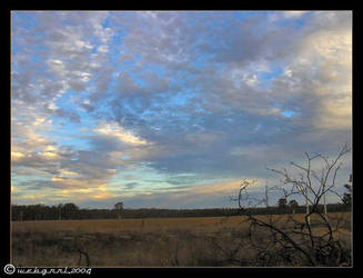 skies at barmah by webgrrl