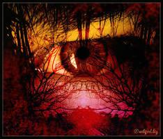 Eye on Nature by webgrrl