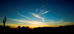 Saguaro Sunset by par-a-bola