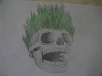 psycadellic skull by ollzlolz