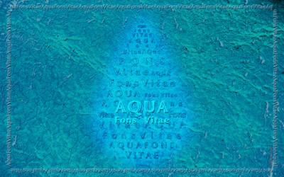 Aqua - Fons Vitae
