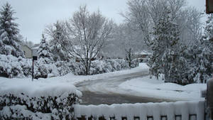 It's White Again