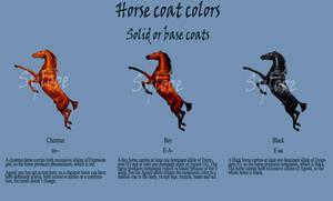1-Horse base coats
