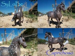 24- Caprichoso