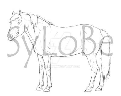 Mustang custom breed art - lines by SyLoBe