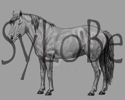 MUSTANG breed art
