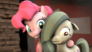 Pinkie and Marble Pie