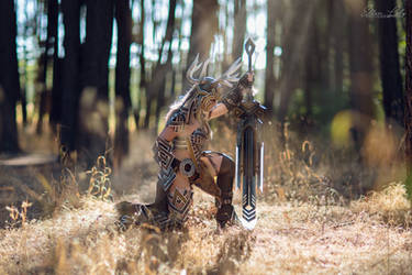 GW2: Norn Stag Armor II