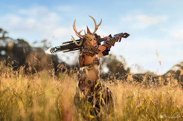 GW2: Norn Stag Armor III