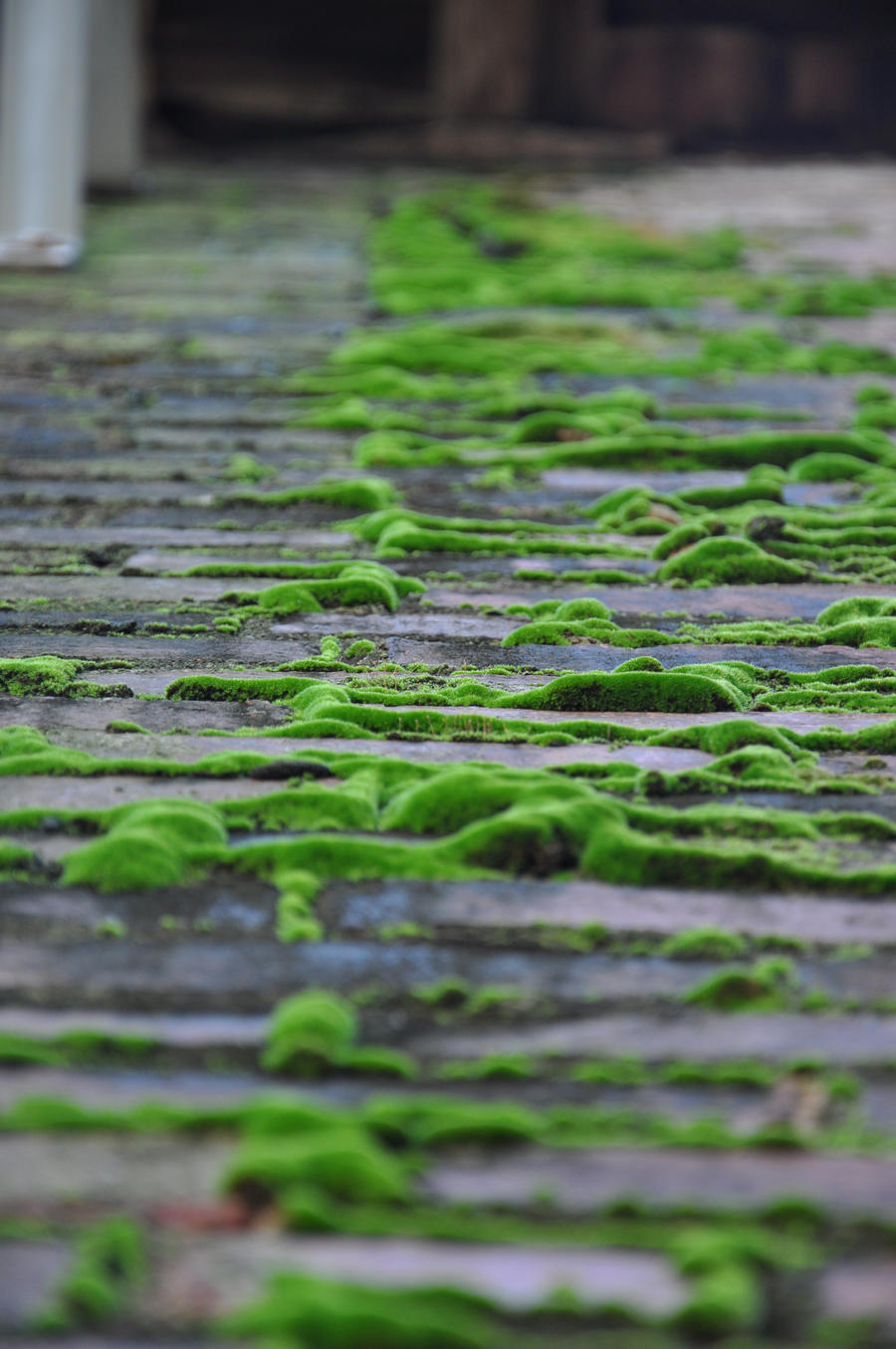 Mossy Brick by Shroomkin