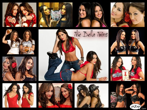 The Bella Twins By Kdonovan1992