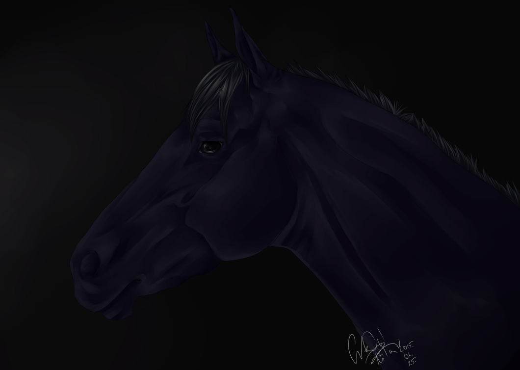 Realistic Horse 2 + SPEEDPAINT by Leloowe