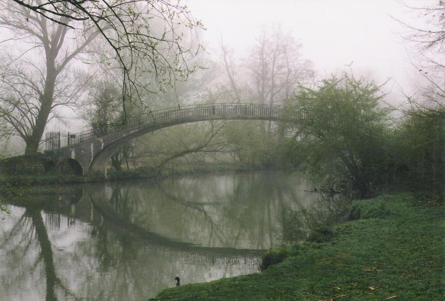 Bridge of Dreams by VertFey