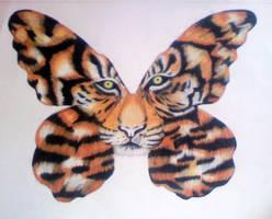 TigerFly by ifeyescouldtalk