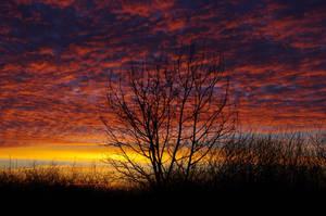 Sunrise8 by duwy