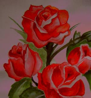 Vermilion roses