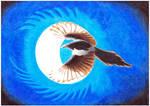 Lunar Magpie