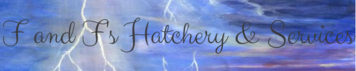 f_and_f_s_hatchery_services_banner_by_ilightrune-dc7phlj.png