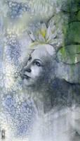 Waterlily by seaspell