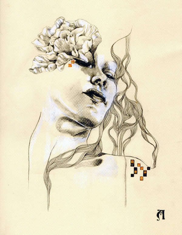 Metamorphosis Drawings Number One By